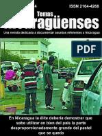 Temas nicaragüenses