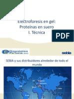 EFE proteínas en gel (K20) e hydrasys