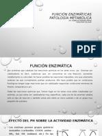 Control enzimatico.pdf