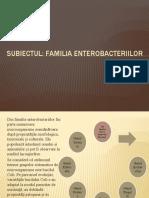 ENTEROBACTERIILE (E.COLI, SALMONELA, SHIGELLA)