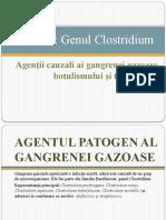 GENUL CLOSTRIDIUM.pptx