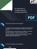 As estruturas e comportamentos sociodemográficos (1).pptx