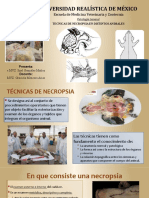 Tecnicas de Necropsias-Itzel González Muñoz