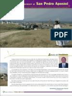 Programa San Pedro 2006