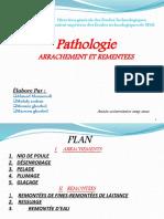 pathologie-tp31 arr et rementé (1)