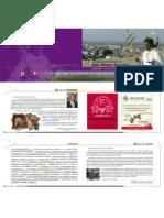 Programa San Pedro 2007