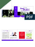 Programa San Pedro 2010