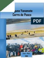 PDS-SUELOS-FINAL