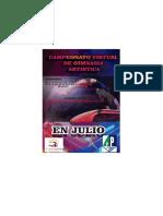 bases campeonato virtual