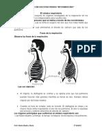 Anatomía (10)
