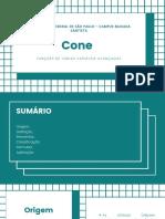 Trabalho FVV Cone.pdf