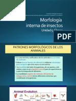 Clase 1 Unidad 5.pdf