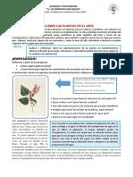 arte y cultura dia5-ORIENTACIONES (1).pdf