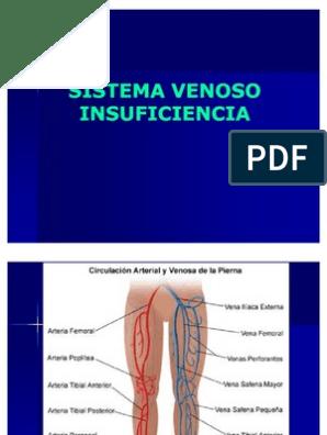 Enfermedad vascular pulmonar crónica