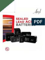1.Axyl batteries