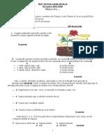 0_test_evaluare_initiala_v