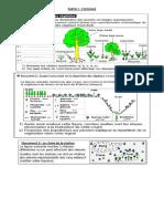 Document TCS (1).pdf