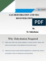266755802-Presentation-TEG