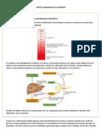 PARTE ll bioquimica de la diabetes...docx