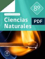 C-Naturales-8º-Básico