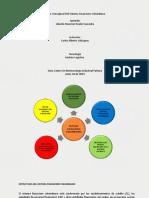 Mapa Conceptual Financiero Colombiano