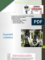 DIAPOSITIVAS SEGURIDAD CIUDADANA
