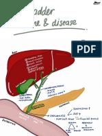 Gallbladder stones and diseases_thalamustudy.pdf