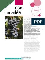 CATALOGUE - Guide raisin de table SEPT 2017coul V5 (1)-pages-supprimées.pdf