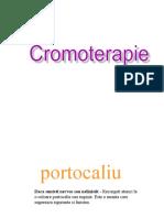 www.nicepps.ro_8355_Cromoterapie.pps