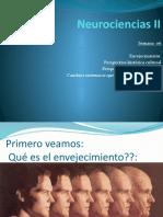 ENVEJECIMIENTO-DIAPOSITIVAS-CORREGIDAS-DIANA-SANCHEZ-SAGASTEGUI.pptx