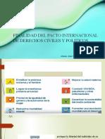 FINALIDAD DEL PACTO INTERNACIONAL DE DERECHOS CIVILES Y POLITICOS