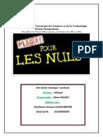 plagiat(1).docx