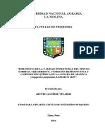 TESIS-UNALM_ArturoAguirreVelarde (2)