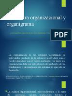 organización y organigramas