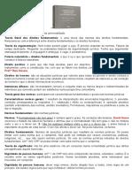 Resumo Direitos Fundamentais 27092020.docx