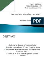 Terceiro-Setor.pdf