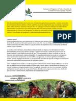 Guía 2011