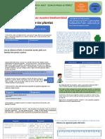 CLASE COMINICACION D5 S 27.pdf