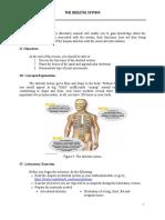 ARMONIA-ALEXA-JOIE-C.-BSN-1B-Manual-Skeletal-System
