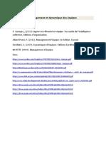supportmanagementéquipe.pdf