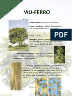 PAU-FERRO