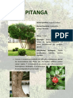 Pi Tang A