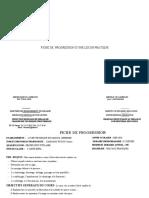 FICHE DE PROGRESSIO T.P (13)