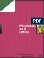 ANALISE_FINANCEIRA_E_GESTAO_ORCAMENTAL_FORMADOR