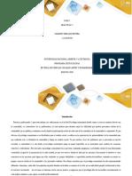 Fase 2 - El problema de investigación ADRIAN ORTIZ.docx