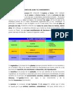 ACERCA DEL ALMA Y EL CONOCIMIENTO.docx