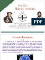 PRESENTACION_MEMORIA_PENSAMIENTO_LENGUAJE_2020