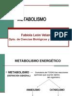 METABOLISMO 2.ppt