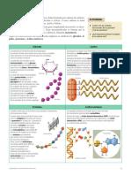 Organización y estructura de los seres vivos PARTE 2 (75-77)