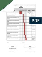 Cronograma-ejecución-encuesta2.pdf